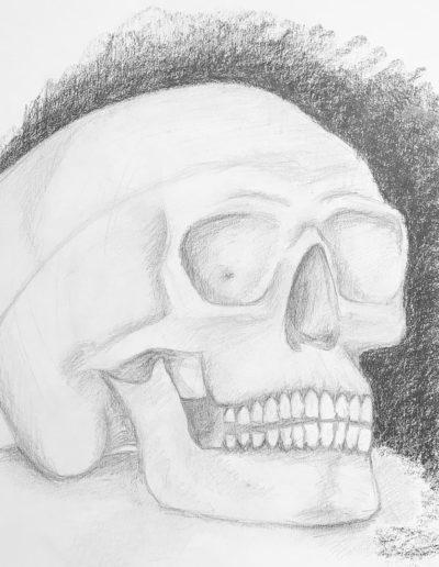 Croquis minute #skull